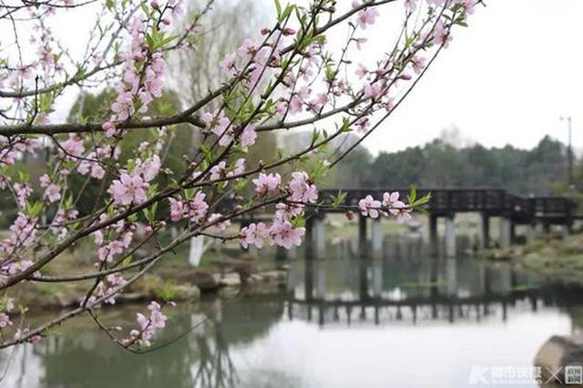 杭皋亭山景区活动项目陆续开放 医护工作者可免费玩