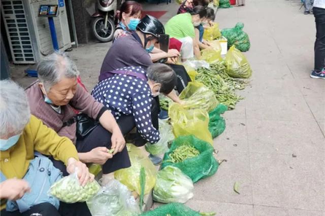 杭州大伯大妈坐在路边剥蚕豆 有人一口气买50斤回去