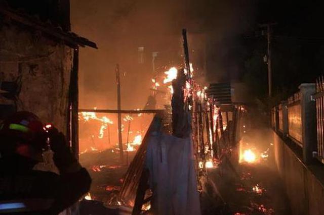 深夜杭州1农户家养殖场起火 消防发现幸存鸭并带回队