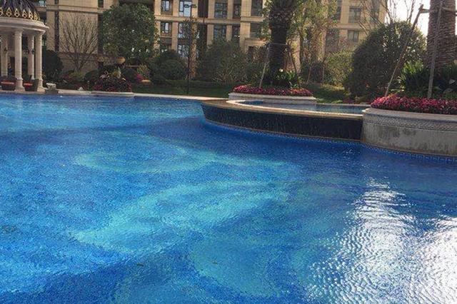 杭1小区女租客牵狗进景观泳池后续:已对泳池换水消毒
