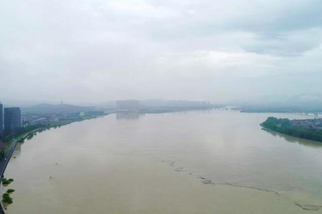 密切关注 浙江西江塘闻堰段遭遇1959年以来大流量