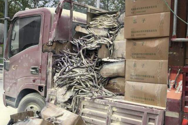 一货车在浙江高速起火 收费员化身消防员紧急排险