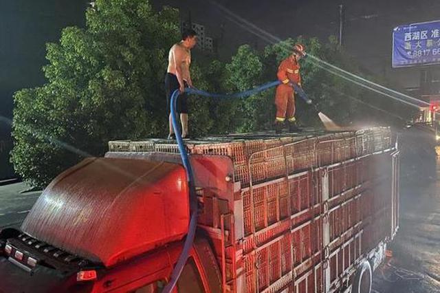 鸭子也被热晕了头 杭州消防给4000只鸭子洗澡降温