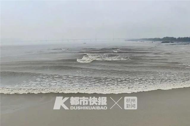 这段潮水视频刷爆杭州人的朋友圈 已致7辆车受损