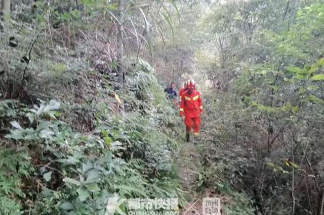 50人驴友团宁波溪口景区遭马蜂袭击 有人失足滚落山坡