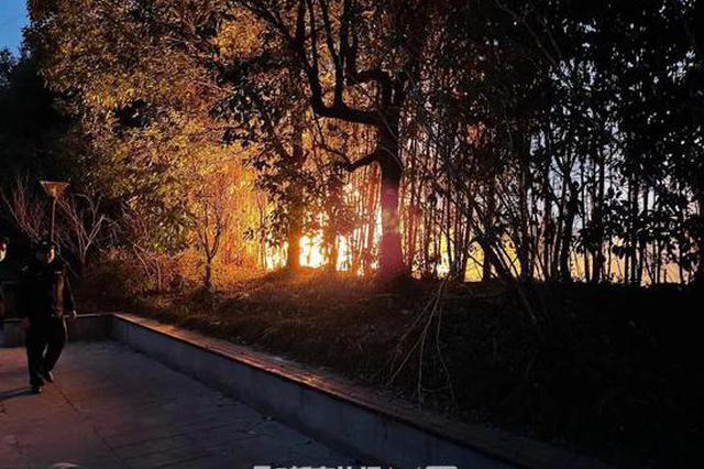 傍晚杭州下沙西地铁站附近一停车场旁发生火灾