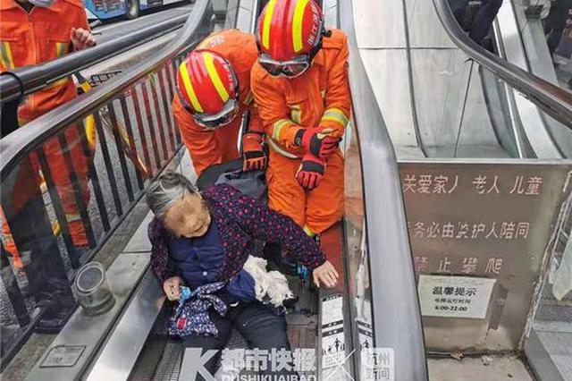屡坏屡修屡修屡坏 杭州这条最窄的电梯又出事儿了