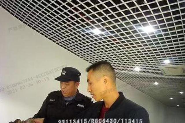 杭州一公司玻璃离奇碎裂 以为是人干的没想到是野鸡