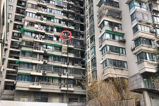 杭州凤凰南苑高空坠物伤人事件 周大姐脾脏已被切除