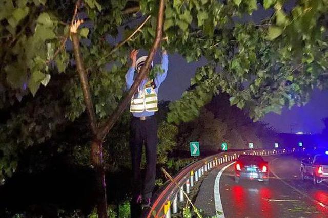 凌晨2点暴雨中的浙江高速上 90后高速交警这幕刷屏