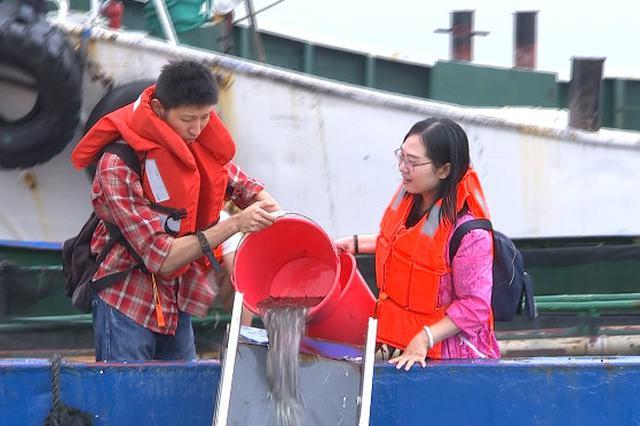 北仑开展大规模码头工程生态补偿活动 放流5亿尾鱼苗