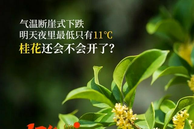 """多地""""断崖式""""降温 周末夜里杭州最低只有11摄氏度"""