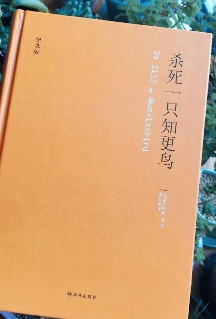 浙江传媒学院实验中学:让你在人群中闪闪发光的,是知识