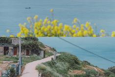 夏天就想去舟山海岛的海边