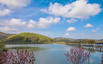 人间四月 南北湖这么美