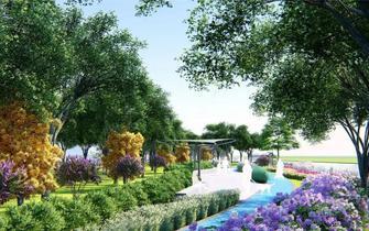 惊艳平湖将新增一条景观绿道 一大波美图先睹为快