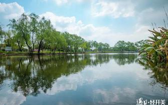 遇見經開之美系列三 穆湖森林公園