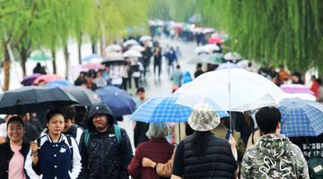 杭城再啟陰雨模式