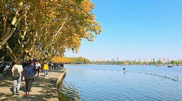 来杭州西湖边观赏醉人秋色
