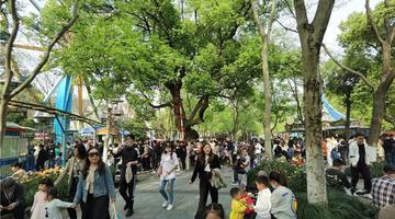 杭州少年宫游乐场人气爆棚
