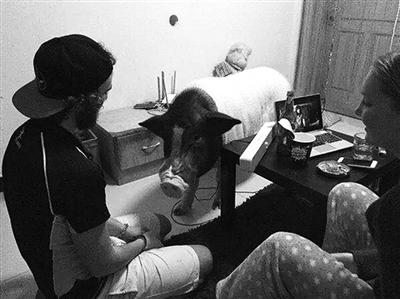 亚当、艾娜和鲍勃在一起(资料照片) 记者 蒋大伟 摄