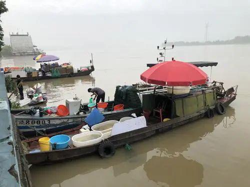 杭州钱塘江结束4个月休渔期 闻堰江边各式江鲜开卖