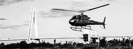 程伟士公司买的直升机正在作业。 程伟士供图
