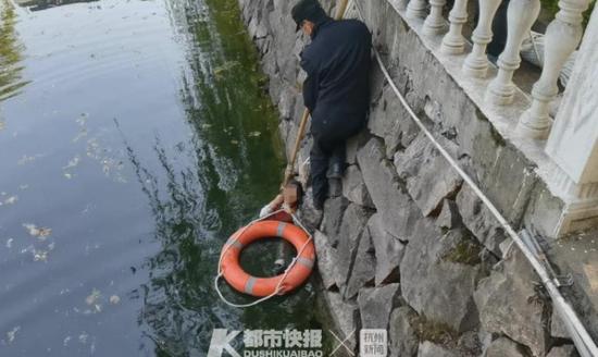 浙江6岁女童跌落2米深水潭 路过两孩子教科书式救人