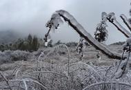 湖州白雪皑皑美不胜收
