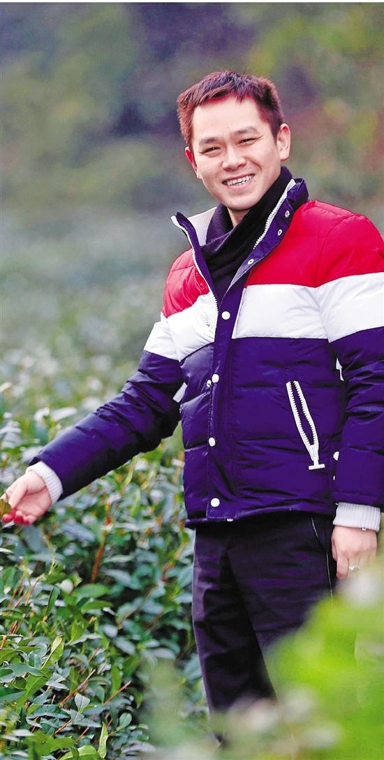 杭州80后茶农守着新茶冒尖儿 今年龙井肯定量大质好