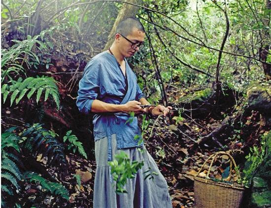 杭州小伙放弃几十万年薪去种苔藓 方寸之间凝固春天