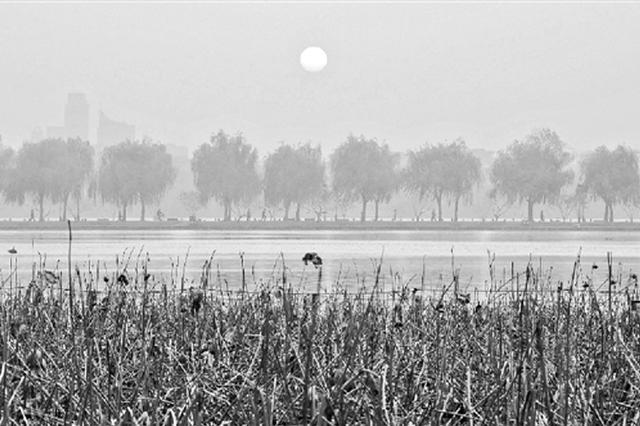 杭州昨最低温创入冬来最低值 下周最低温会跌至0℃