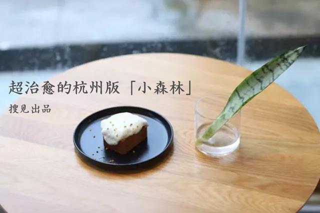 《搜见》第150期:治愈人心的杭州版小森林