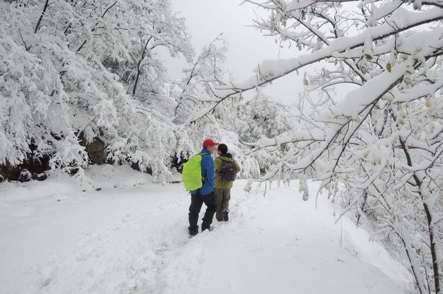 杭80后美女设计师从小体育渣 如今徒步穿越爬雪山