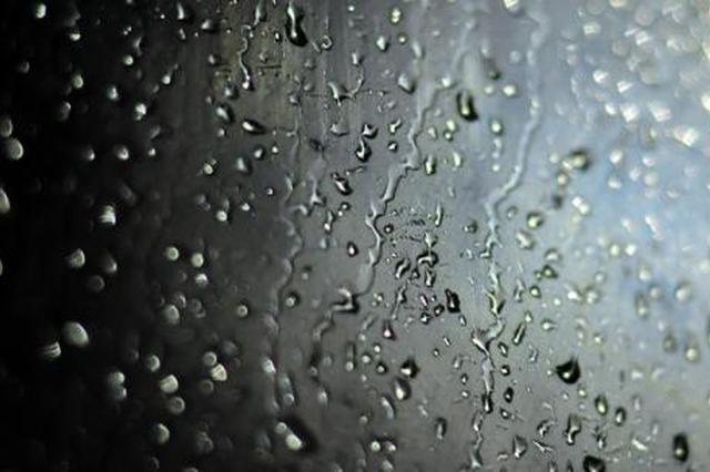 杭城未来4天晴好最高温将升至19℃ 除夕和初一有阴雨