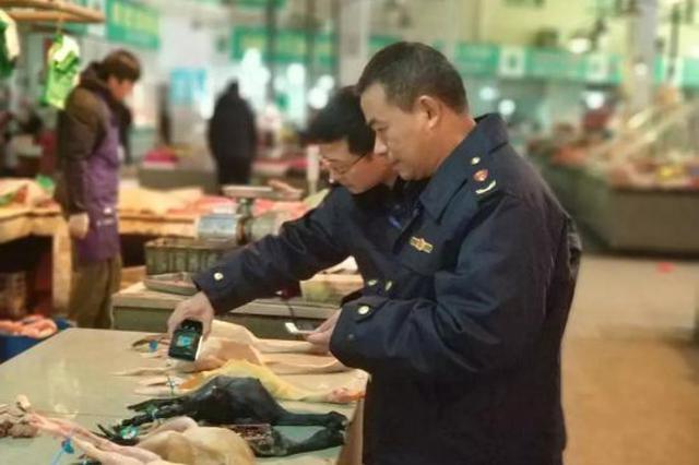 杭州查获活禽和未净膛杀白禽类698只 涉案货值2.6万