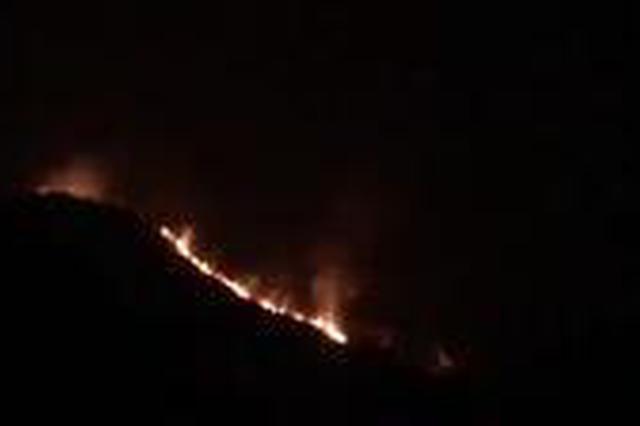温州永嘉沙头一山头发生火情 已得到控制