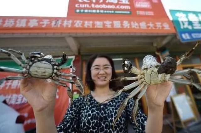 湖州长兴电商发展迅猛 村淘交易额列全省各县区第一