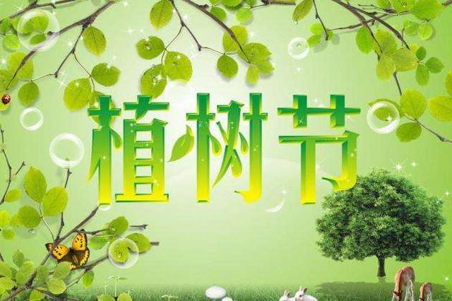 第40个全国植树节来临 杭州人植树的历史已不止千年