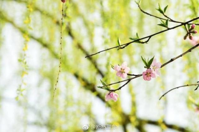 杭州明起雨纷纷冷空气也来补刀 最低气温将低于10℃