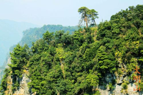 杭州1老汉零下5℃寒夜迷失山林 在山洞躲一夜获救