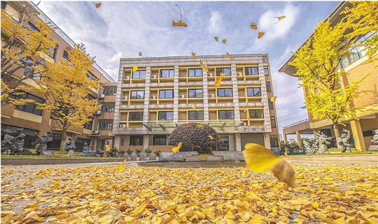 杭州下沙校园迎最美季节 绚丽秋景让人如痴如醉