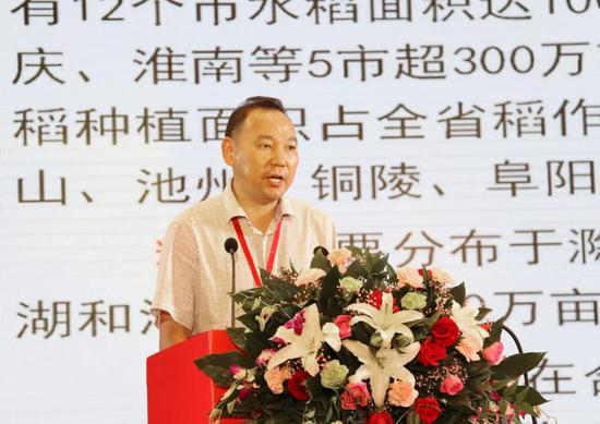 安徽农科院水稻所研究员吴文革
