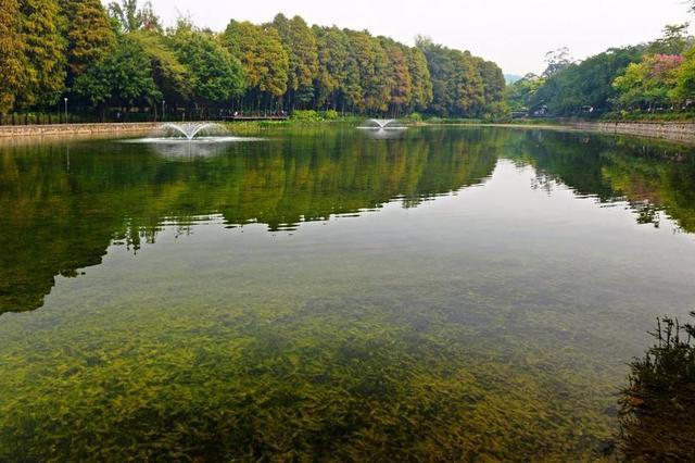 社会资讯_地表水控制断面水质目标考核机制建立_新浪安徽_新浪网
