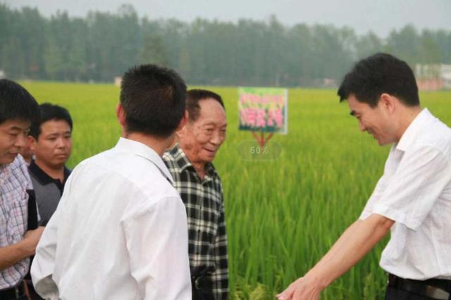 """袁隆平曾五次到芜湖考察指导 完成了超级稻的""""跨越"""""""
