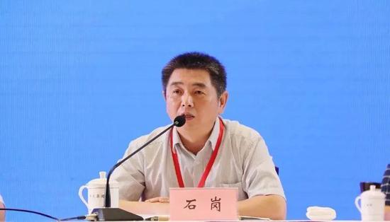 武汉大学科学技术发展研究院副院长石岗