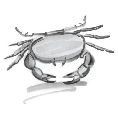 巨蟹座的人生能得多少分