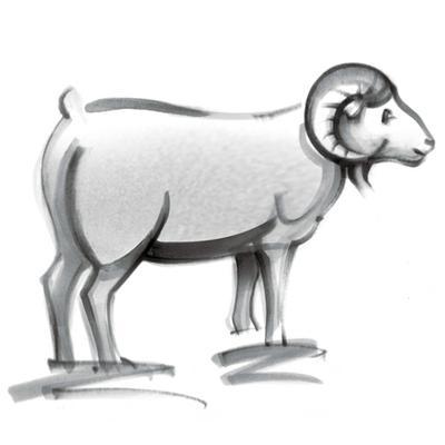 白羊座的人生能得多少分