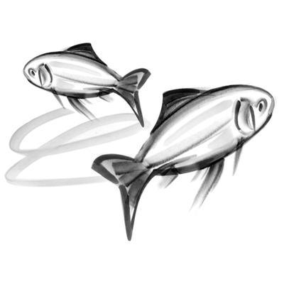 双鱼座的人生能得多少分