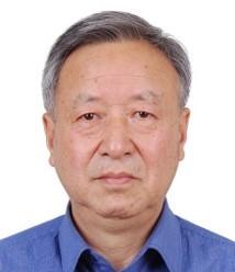 国家新能源汽车创新工程专家组组长 王秉刚
